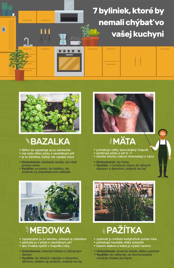 Pestujeme bylinky v kuchyni – týchto 7 u vás nesmie chýbať